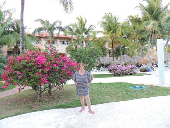 Iberostar Hacienda Dominicus: parque