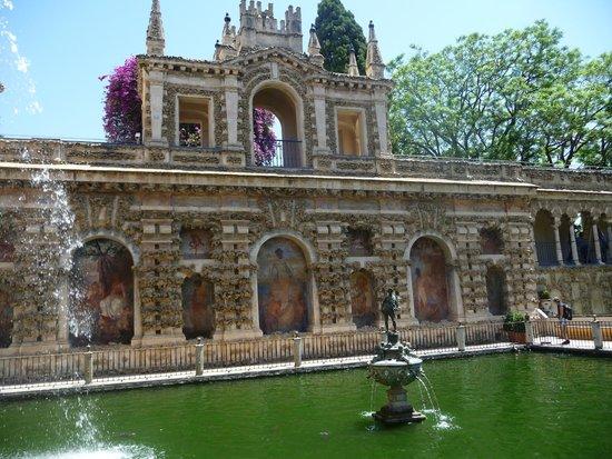 Alcázar: Les jardins de l'Alcazar de Seville, bassin
