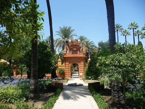 Alcázar: Les jardins de l'Alcazar de Séville - vue sur une allée