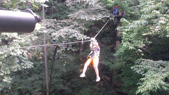 Pigeon River Canopy Tours : jonah zipping