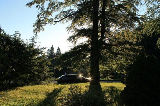 Berg- und Jagdhotel Gabelbach: Blick in den Hotelpark