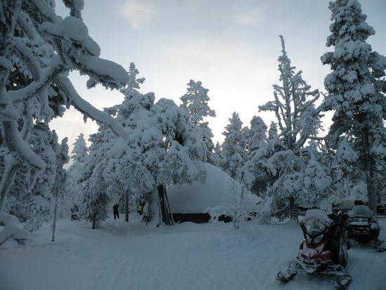 Lapland Hotel Hetta: Paysages
