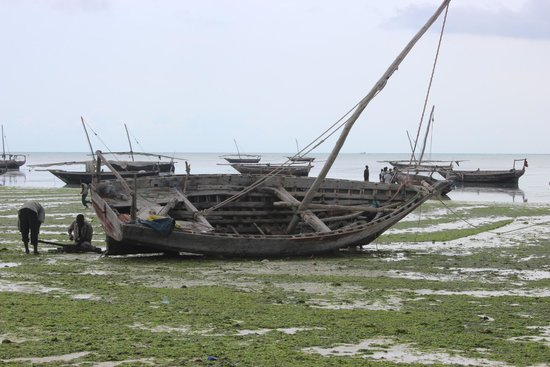 DoubleTree by Hilton Resort Zanzibar - Nungwi : fishing boat