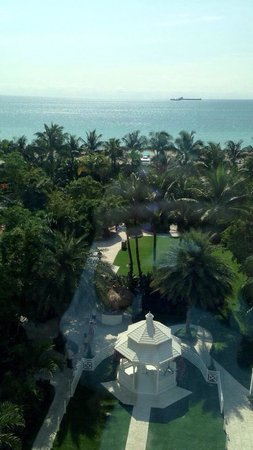 The Palms Hotel & Spa: view