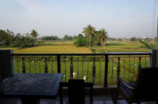 Rumah Kayen Family Homestay: Rice fields around the property