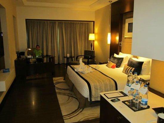 Radisson Blu Agra Taj East Gate: Room