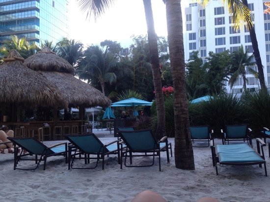 The Palms Hotel & Spa: sun was setting. love that they have sand on the hotel grounds. it's a nice touch