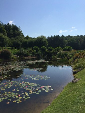 Half-Mile Farm by Old Edwards Hospitality: A pond on the property
