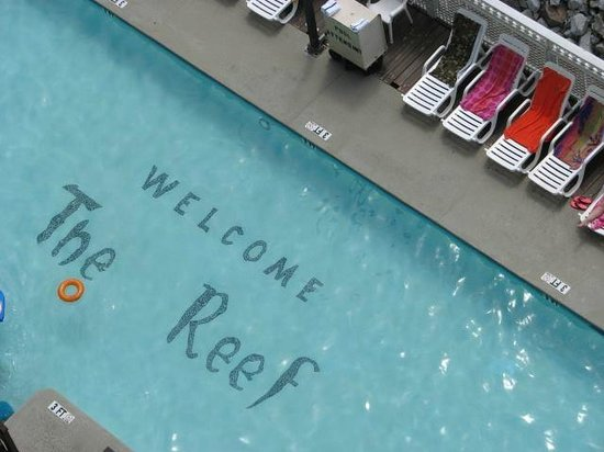 The Reef Myrtle Beach: The View from our Balcony of the Oceanfront Pool.