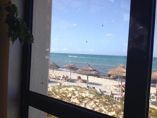 Radisson Blu Ulysse Resort & Thalasso Djerba: Flies Everywhere in Resturant