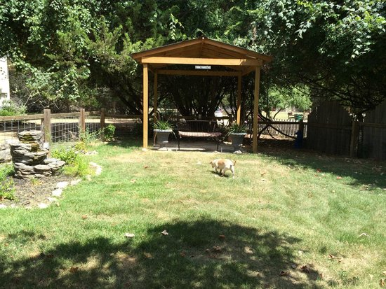 Cypress Creek Cottages: our dog in the very well maintained dog park