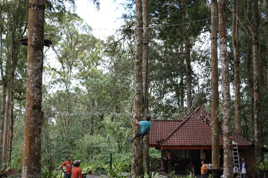 Bali Treetop Adventure Park: Constant supervision