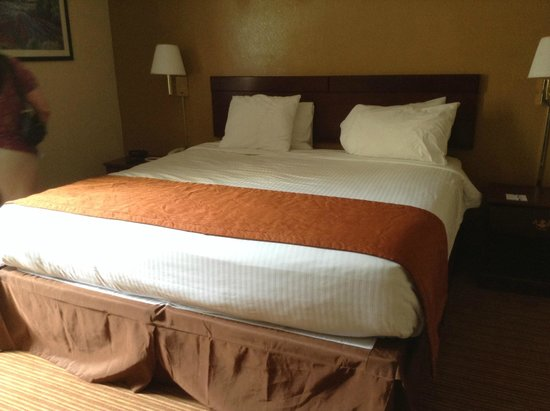 Baymont Inn & Suites Charlotte-Airport Coliseum : the room when i checked in