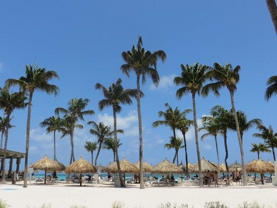 Aruba Marriott Resort & Stellaris Casino: View of the beach from the pool
