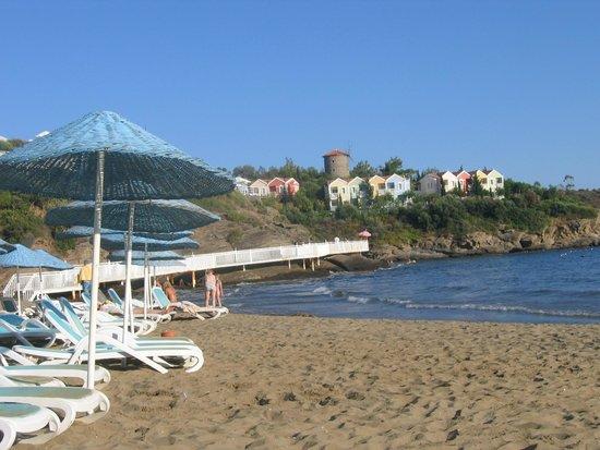 Club Marvy: Grande plage