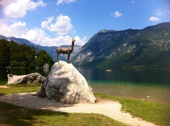 Lake Bohinj: Bohinj