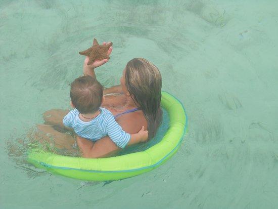 Sol Cayo Largo: Piscine naturel avec étoiles de mer
