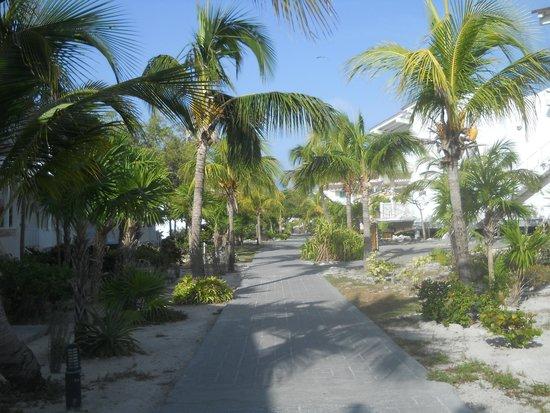 Sol Cayo Largo: Très beau site