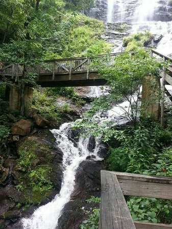 Amicalola Falls State Park: Viewing deck view
