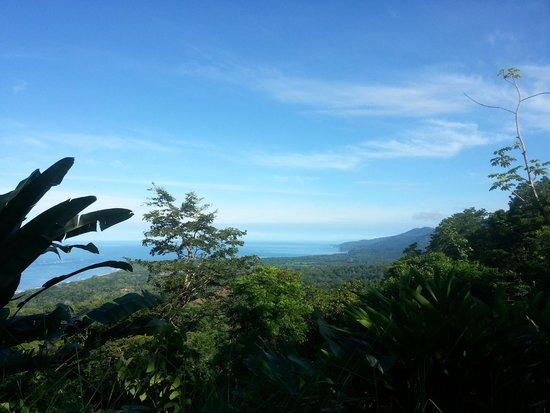 La Cacatua Lodge: Morning walk