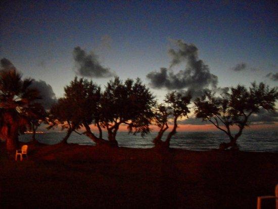 Fiesta Hotel Garden Beach : Dal retro dell'anfiteatro guardando il mare