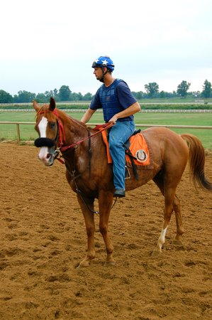 The Thoroughbred Center: Mengy out for training