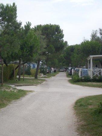 Camping Vigna sul Mar: viali