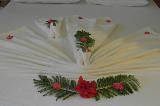 Suncity Hotel & Beach Club: the welcome swan