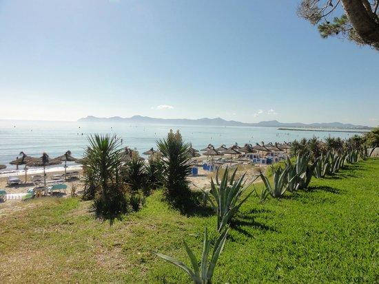 IBEROSTAR Playa de Muro Village : Blick vom Frühstücks-Aussenbereich