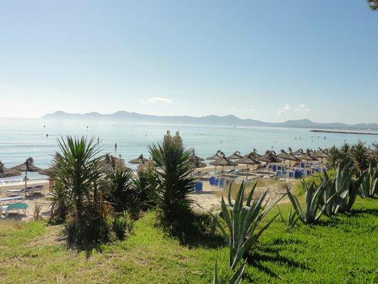 IBEROSTAR Playa de Muro Village: Traumhafter Blick direkt vom Hotelgelände aus übers Meer