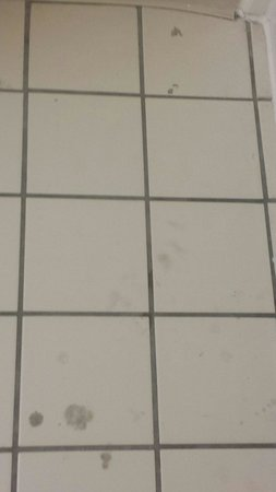 Extended Stay America - Fort Lauderdale - Davie: Tile floor