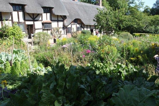 Anne Hathaway's Cottage & Gardens: Just breathtaking.
