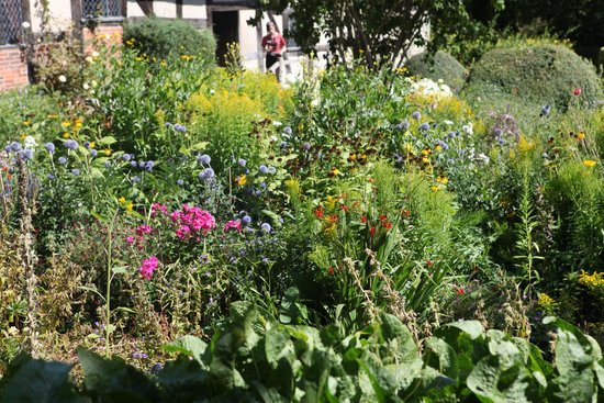 Anne Hathaway's Cottage & Gardens: So many different types of cottage garden flowers.