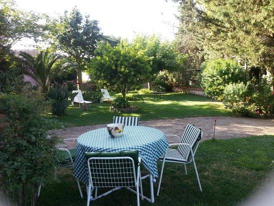 B&B Ai Cipressi: Una piccola parte del giardino