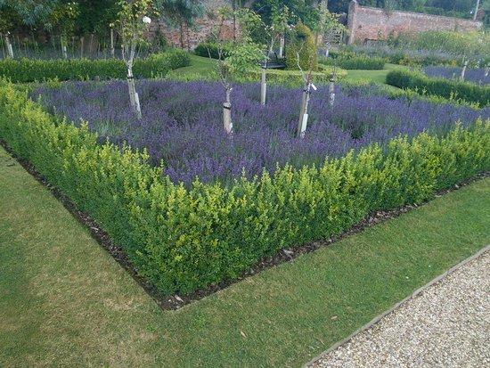 Warner Leisure Hotels Littlecote House Hotel: lots of garden areas to walk round