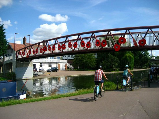 Cambridge Bike Tours: Cam river decorated for WWI remembrance