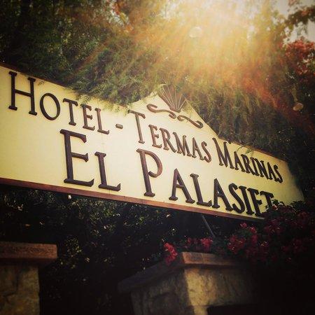 Thalasso Hotel El Palasiet: La entrada