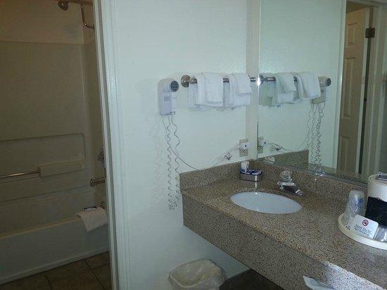 BEST WESTERN PLUS Ruby's Inn: Bathroom & double sink area separated