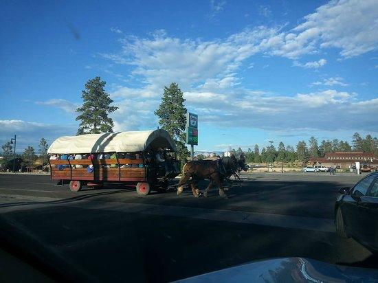 Best Western Plus Ruby's Inn: Horse drawn wagon rides (for a fee)