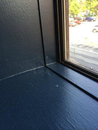 Bavarian Ritz Hotel: Spider webs, dust and dirt in windows