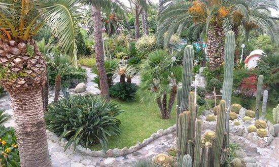 Park Hotel Terme Mediterraneo: Vista dal balcune