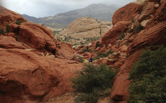 Red Rock Canyon National Conservation Area: Hiking in Red Rock Conservation Area