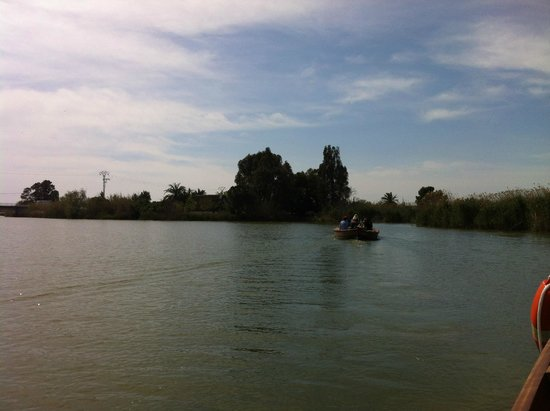 Parque Natural de la Albufera: viaje en barco-2