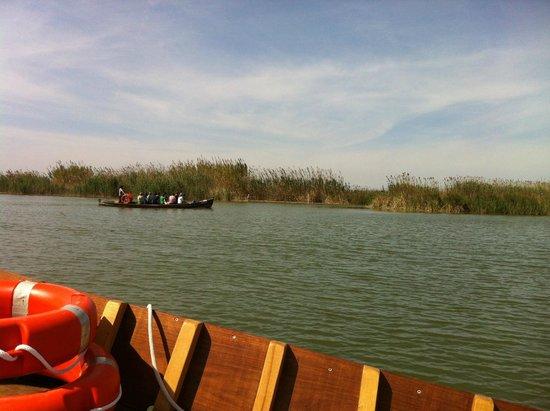 Parque Natural de la Albufera: viaje en barco-3
