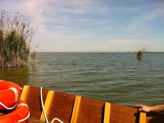 Parque Natural de la Albufera: viaje en barco-4