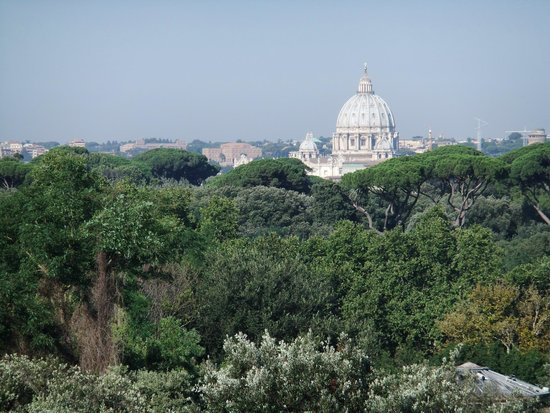 Parco dei Principi Grand Hotel & SPA : View of St Peters from our balcony at the Parco dei Principi