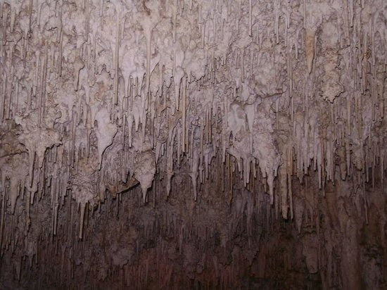 Frecce delle Grotte di Antonio Piccinnu: Hanging around!