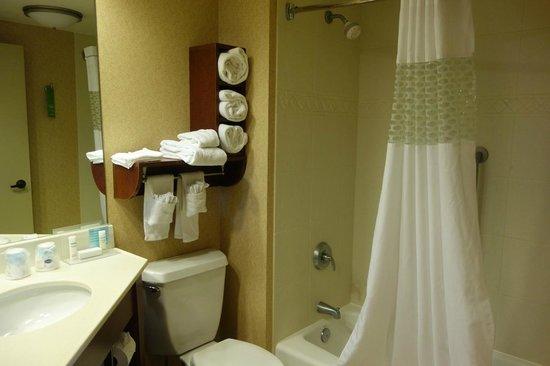 Hampton Inn Minneapolis / Eagan: Elegant bathroom with plenty of plush towels.