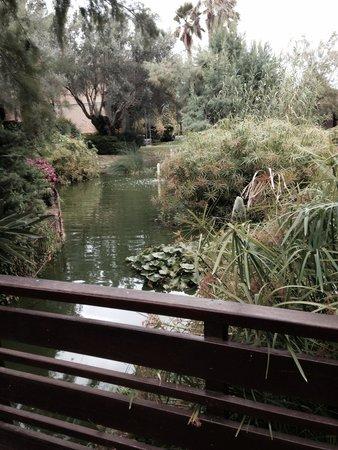 PortBlue Club Pollentia Resort & Spa : View from room