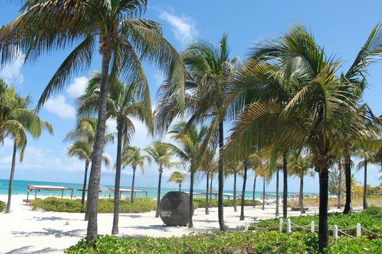 Club Med Turkoise, Turks & Caicos : Georgeous